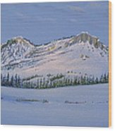 Observation Peak Wood Print by Michele Myers