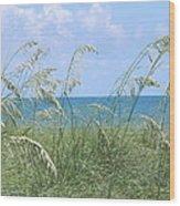 Ocean And Oats Wood Print
