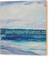 Ocean Assateague Virginia Wood Print