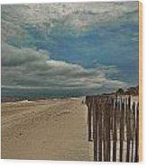 Ocean Beach Dunes Wood Print