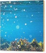 Ocean Garden Wood Print by Stelios Kleanthous
