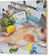 Ocean Perch On A Fish Counter Wood Print