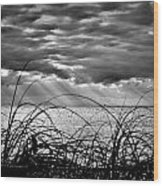 Ocean Rays Black And White Wood Print