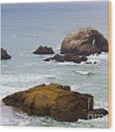 Ocean Rocks Near San Francisco Ca Cliff House Wood Print