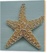 Ocean Star Fish Wood Print