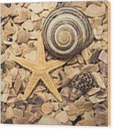 Ocean Treasure Trove Wood Print
