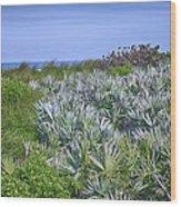 Ocean Vegetation Wood Print