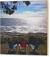 Ocean View At Pemaquid Point Maine Wood Print