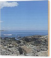 Ocean View Panoramic Wood Print