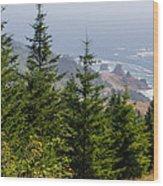 Ocean Vista Wood Print