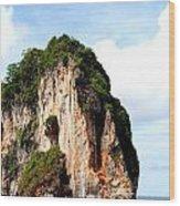 Ocean Wall- Phi Phi Island - Krabi Thailand- Viator's Agonism Wood Print