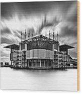 Oceanarium Wood Print