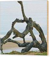 Oceano Dunes After The Storm II Wood Print