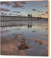 Oceanside Pier Seaweed Wood Print