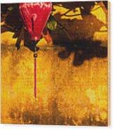 Ochre Wall Silk Lantern 03  Wood Print