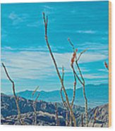 Ocotillo At Top Of Ladder Canyon With Salton Sea In Distance In Mecca Hills-ca Wood Print