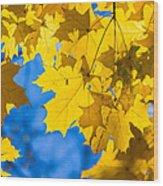 October Blues 8 - Square Wood Print