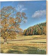 October Gold Wood Print