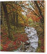 October In Oregon Wood Print