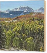 October In The San Juans Wood Print