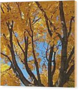 October Sky 1 Wood Print