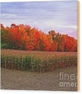 October Sunset On The Autumn Woods Wood Print
