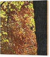 October Tree Wood Print