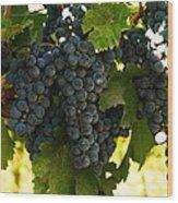 October Vintage Bonair Winery  Wood Print