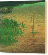 Ode To Monet Wood Print