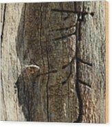 Of An Unseen Hand Wood Print