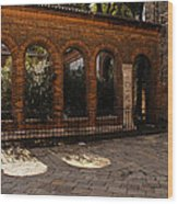 Of Courtyards And Elegant Arches  Wood Print