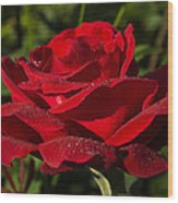 Of Red Roses And Diamonds  Wood Print