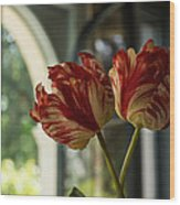 Of Tulips And Windows Wood Print