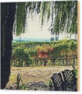 Off Into The Horizon Wine Country Views Wood Print