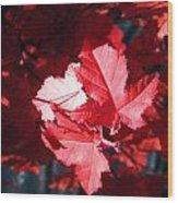 Oh Canada Wood Print
