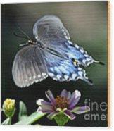 Oh Heavenly Garden Wood Print