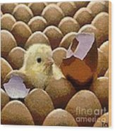 Oh No   It's Easter Wood Print