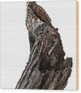 Oh Yeah You Blend By James Figielski Wood Print