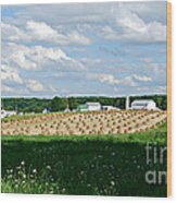 Ohio Amish Farm Wood Print