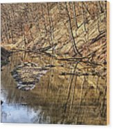 Ohio And Erie Canal Wood Print