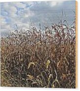 Ohio Corn Wood Print by Andrea Dale