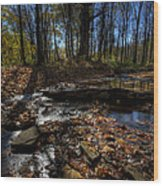 Ohio Fall Beauty Scene Wood Print