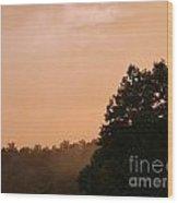 Ohio Fog Wood Print