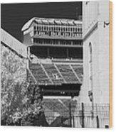 Ohio Stadium 9207 Wood Print