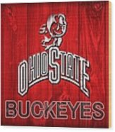 Ohio State Buckeyes Barn Door Vignette Wood Print