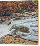 Ohiopyle Falls 2 Wood Print