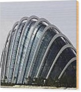Oil Painting - One Of The Conservatories Of The Gardens By The Bay In Singapore Wood Print