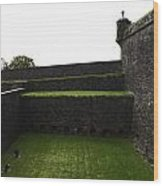 Oil Painting - The Depth Of The Moat Now Covered With Grass At Stirling Castle Wood Print