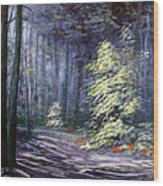 Oil Painting - Forest Light Wood Print