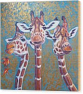 Oil Painting Of Three Gorgeous Giraffes Wood Print